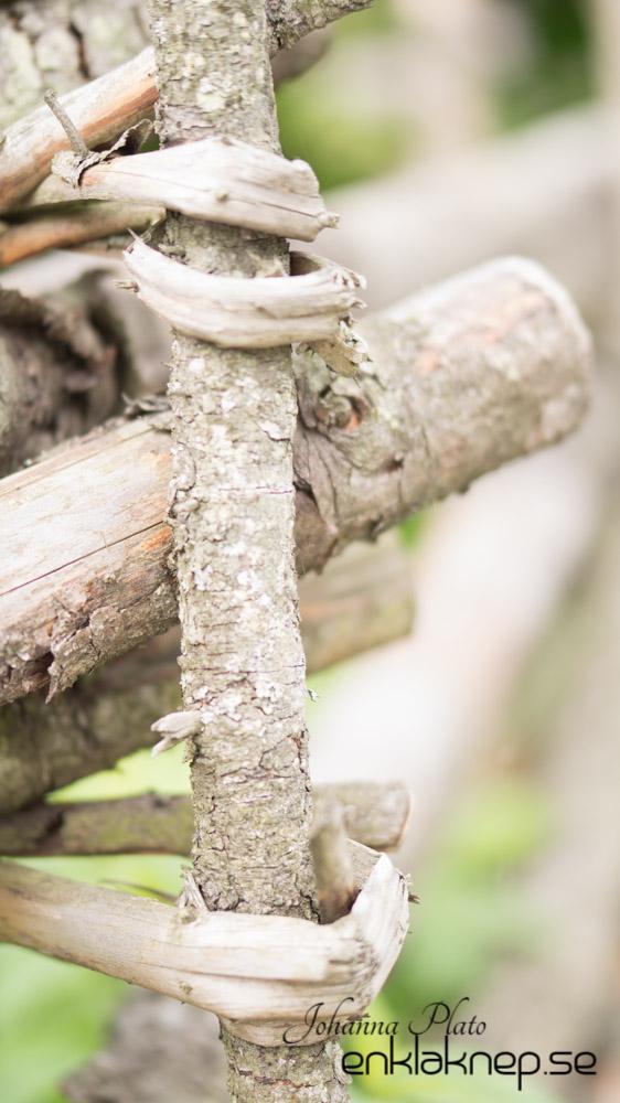 staket, fotografering