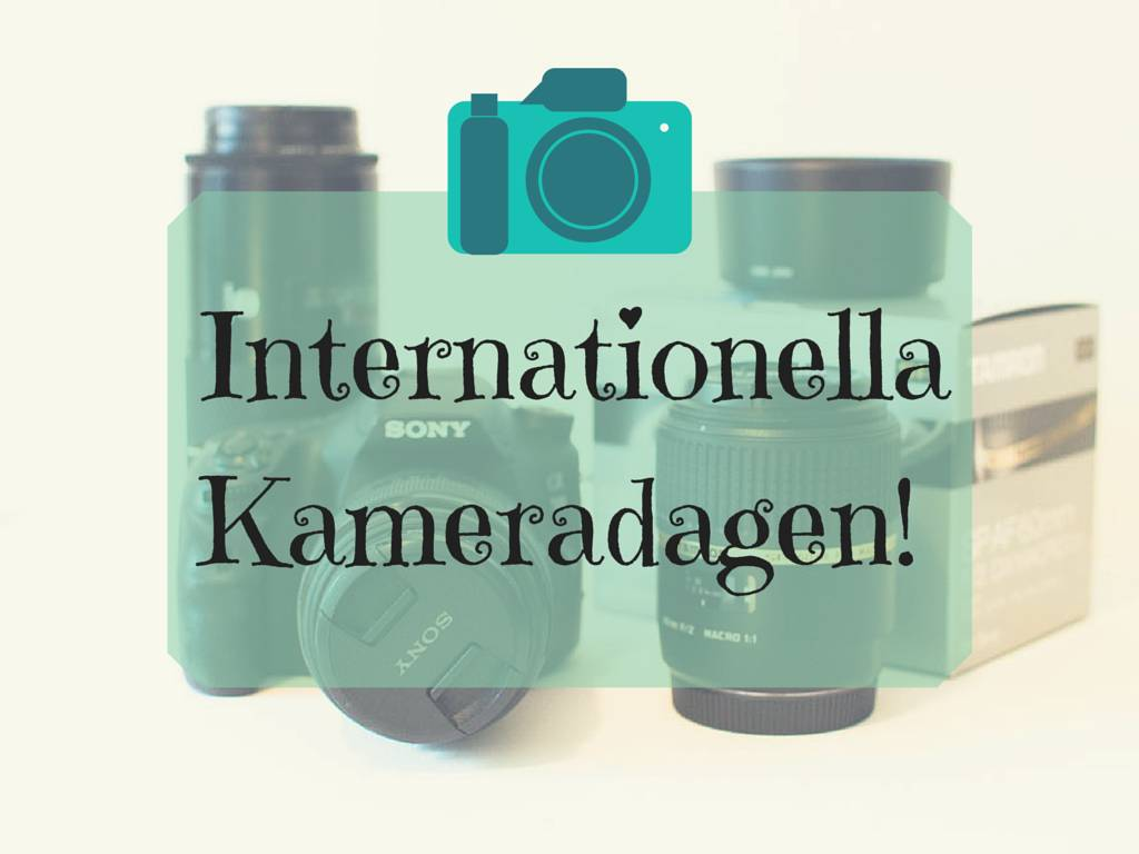 Internationella Kameradagen!
