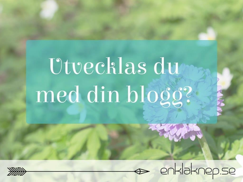 Utvecklas du med din blogg